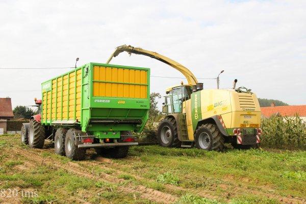 Maïs 2013 chantier n°8