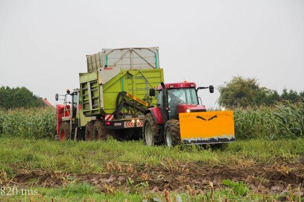 Maïs 2013 chantier n°12