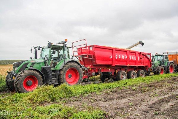 Maïs grain 2013 chantier n°2