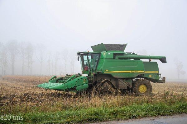 Maïs grain chantier n°7