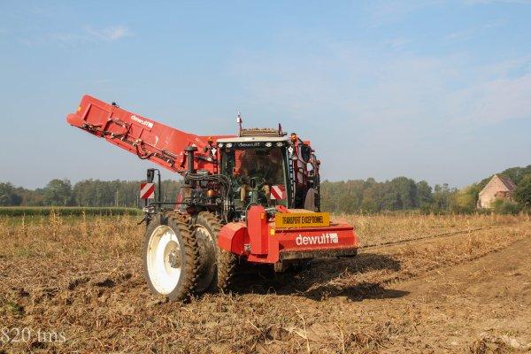 arrachage de pommes de terre avec une nouvelle dewulf RA3060