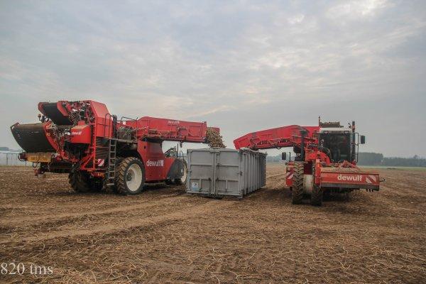arrachage de pommes de terre 2014