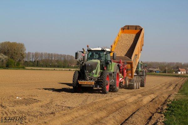 Plantation de pommes de terre 2015