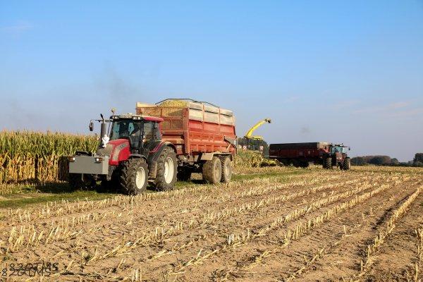 Transport de maïs ensilage par la Sarl Emaille