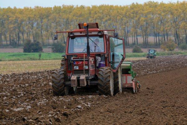 Semis de blé 2015