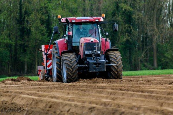 Plantation de pommes de terre 2016