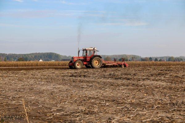 Semis de blé 2016