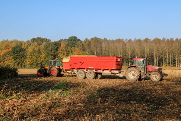 Retour sur le dernier ensilage de maïs de l'année