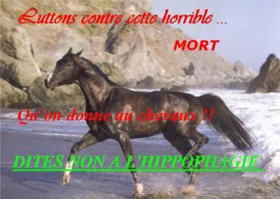 LUTTER CONTRE CETTE HORIBLE MORT