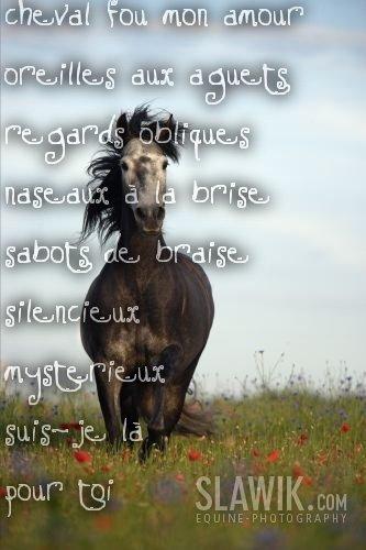 beau poeme