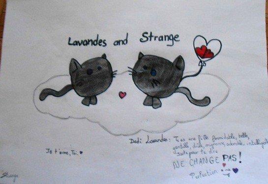Mici Ma Strange *.* ♥