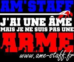 LE VRAI PROBLEME DES STAFF, PITT, ROTT!!!!