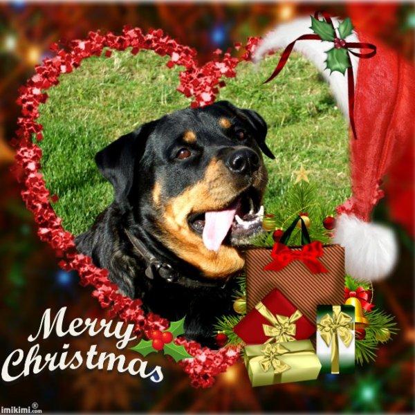Joyeux Noël, ma belle