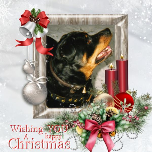 Toi, mon Noël d'amour