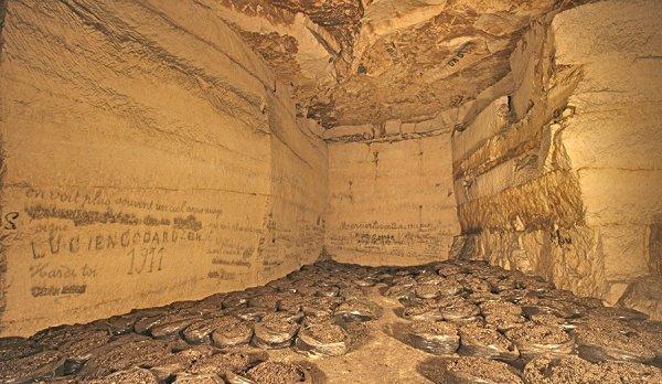Galerie qui on servi a faire les champignons de Paris en sac