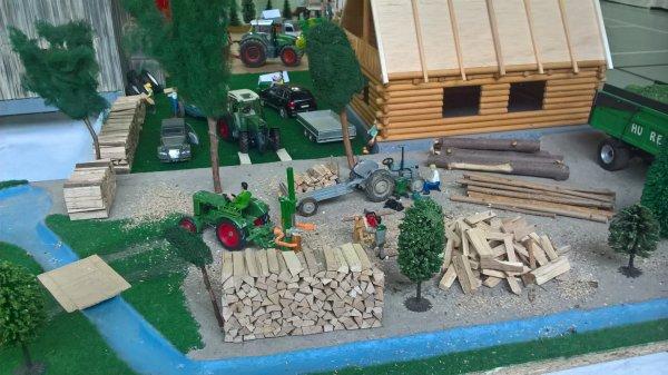EXPO  BLAESHEIM 2016