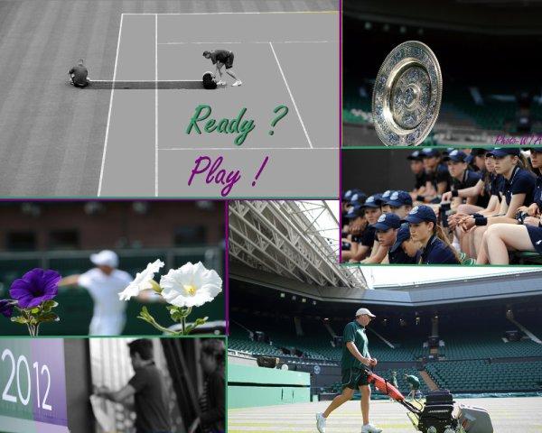 Wimbledon 2012, C'est Parti !