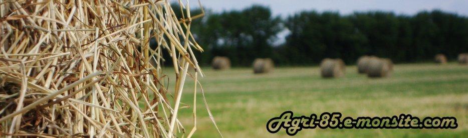 Photos et vidéos d'agriculture en Vendée