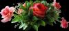 Je vous souhaite un tres bon Dimanche / Wishing you a happy Sunday :)