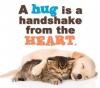 Big Hugs!!!