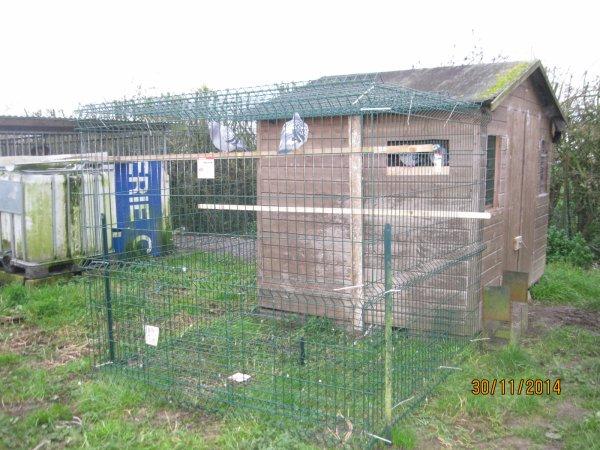 la maison des fifilles