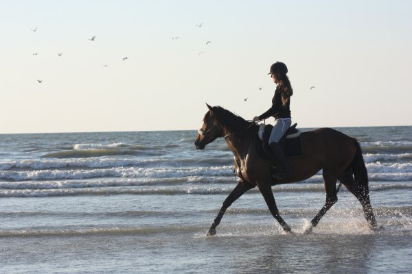 Cabourg photos 2