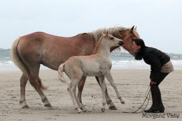 Mes Naïs : plage et retour à la maison !! - juin 2012