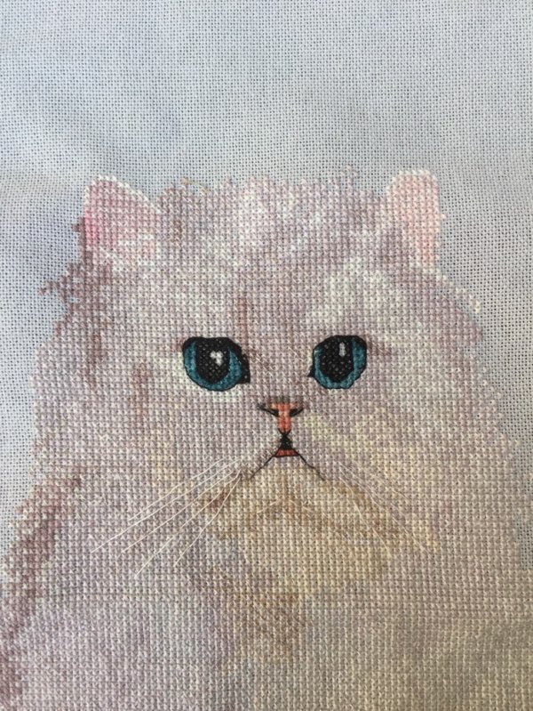 Broderie et chats...