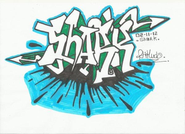 Shark  l'excellence meme du casque de moto