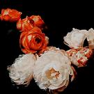 CHAPITRE CINQ  VI. « choses brisées »