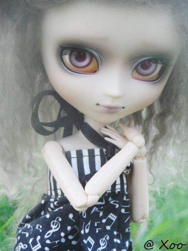 Rencontre pullipienne du 27/07/13 [Chi' , Tsuki & Coco' ] ♥ Partie-1