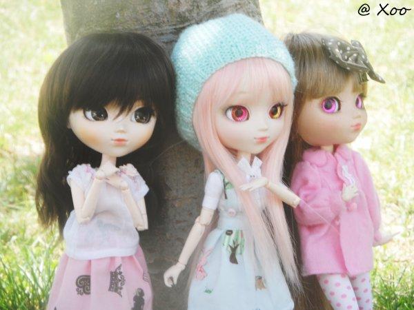 Rencontre pullipienne du 27/07/13 [Chi' , Tsuki & Coco' ] ♥ Partie-4