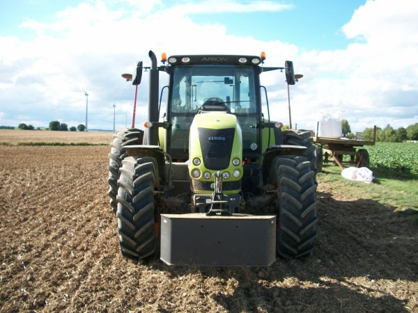 semis d'engrais vert 2010