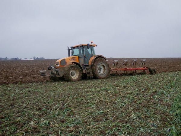 labour d'hiver 2010