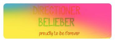 beliebes directioners en force..<3
