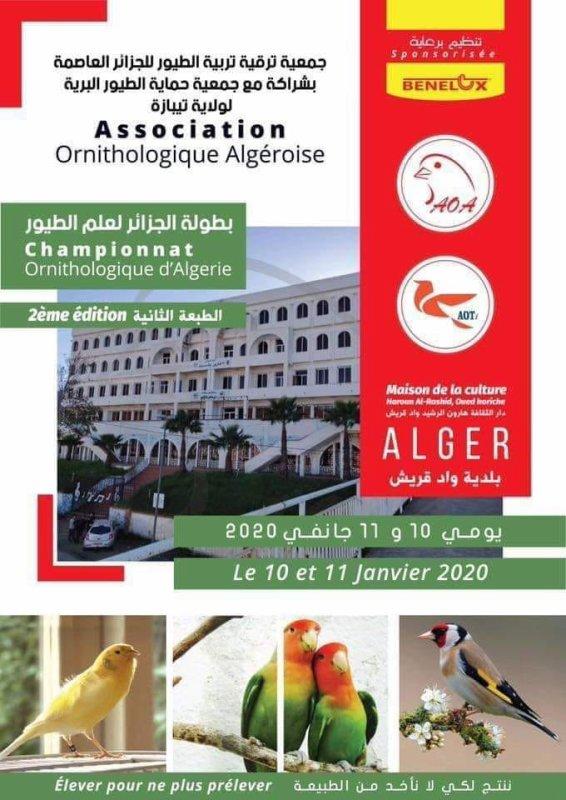 Deuxième national 2019 ALGERIE