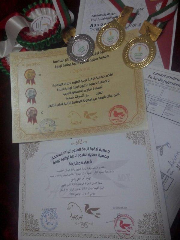 Mes Resultats au deuxieme national ALGERIE JANVIER 2020