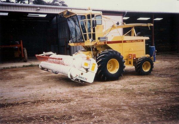 Cuma 1996