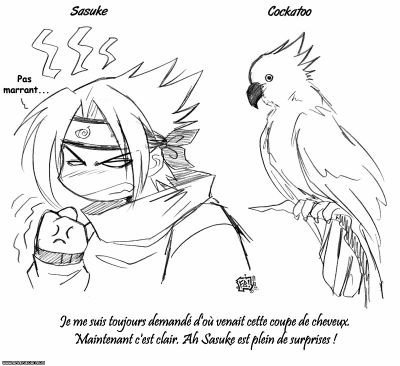 Sasuke et une perruche