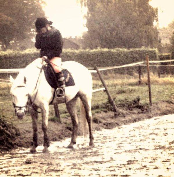 L'amour entre un cavalier et un cheval vaux tous l'or du monde .