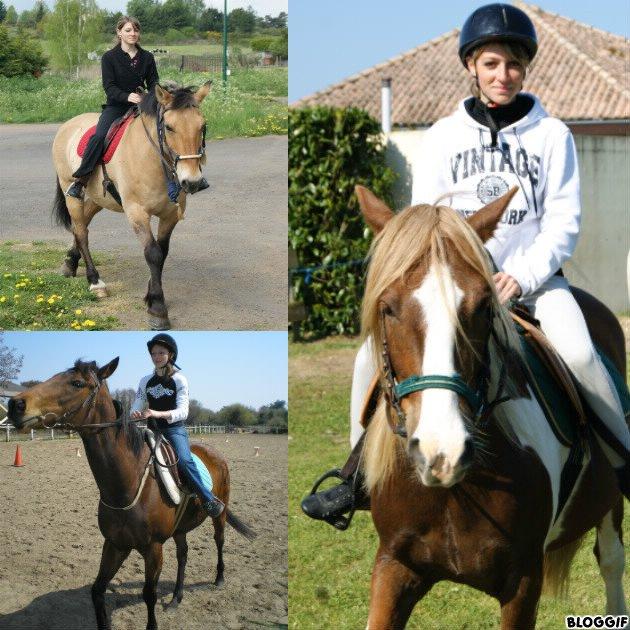 l'équitation !