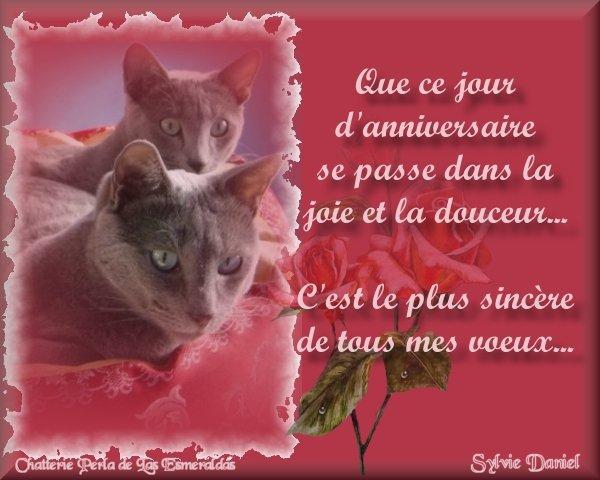 Joyeux Anniversaire Mon Ptit Bout !!!!