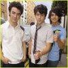 Jonas-BrothersxlL