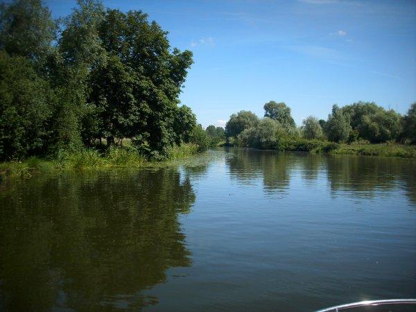 Dame nature, le marais en bateau!