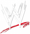 Photo de catch-wwe-34