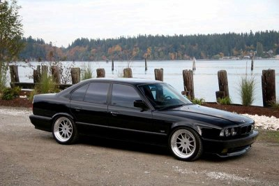 bmw 525 injection 1991