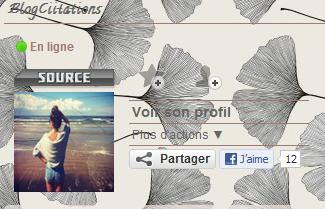 Blogs coups de coeur! :)