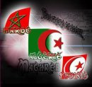 Photo de RaBZouZ-oF-MaGHeB-uNiTeD