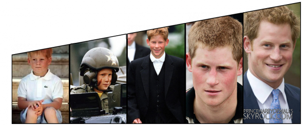 Prince Harry De Galles