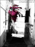 Photo de creativ3-lil-o